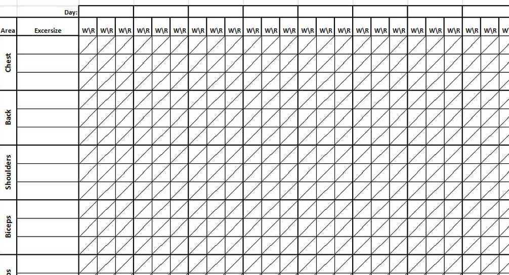 workout excel